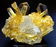 Glassy golden Gypsum - surrounding Halite crystals - from Otuma Mine - Pisco, Ica, Peru