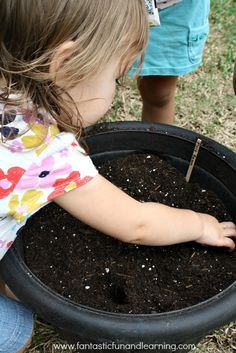 Starting Seeds with Kids