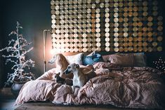 decordemon: An inspiring home with authentic Scandinavian atmosphere Unique Headboards, Inspiration Boards, Beautiful Interiors, Scandinavian, House Design, Couch, Curtains, Furniture, Home Decor