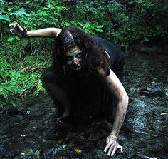 Zombie Run for Humanity. http://www.zombierunforhumanity.com/#