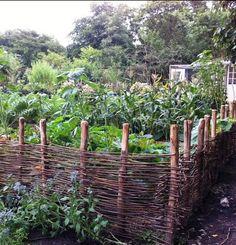 wicker fence surroun