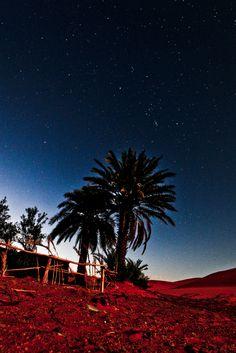 Sahara Stars - Morocco