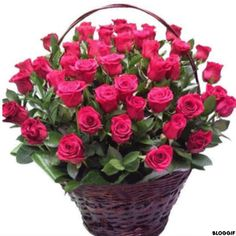 Things to Know about Deals on Valentine's Day Flowers Online Beautiful Rose Flowers, Amazing Flowers, Diy Flowers, Contemporary Flower Arrangements, Large Flower Arrangements, Valentine Baskets, Send Flowers Online, Modern Floral Design, Rose Vase