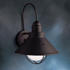Have to have it. Kichler Seaside 9023 Outdoor Wall Lantern - 10.25 in. - $90.2 @hayneedle