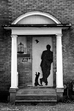 Man, Bird, Cat -Toronto