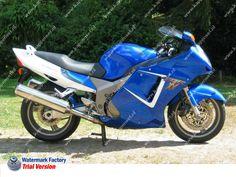 2000 CBR 1100 XX Super Blackbird Cbr, Hot Bikes, Fuel Injection, Cars And Motorcycles, Honda, Blackbird, Vehicles, Image, Motorbikes
