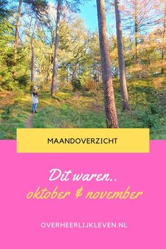 Dit is mijn #maandoverzicht van #oktober en #november. Een beetje met frustraties over de corona vakantie. Maar gelukkig is het ook wel fijn in Nederland. Lekker veel inspiratie weer voor #blogs om te volgen en films natuurlijk.