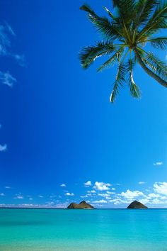 Lanikai Beach,Oahu, Hawaii...5 years here...