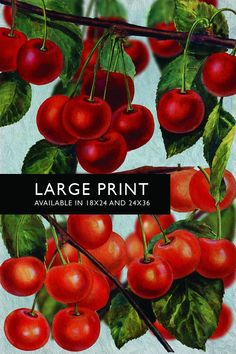Kitchen Wall Art Cherries Print Kitchen Print Food Photograph Fruit Print Vintage Botanical Art Retro Kitchen Art Kitchen Wall Decor - Large Print on Cotton Canvas and Satin Photo Paper. Kitchen print giclee featuring vintage illustration of beautifully bright red cherries. Perfect for lovers of retro art prints and botanical illustrations. Embellished with oil paint texture effects. This print is available on high quality 66lb/255gsm RC (resin coated) satin finish photo paper and (NEW!)...