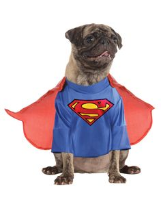 Superman Pet Costume at Spirit Halloween - Up, up and away! Your dog is bound to take flight when you dress them in this officially licensed Superman Pet Costume. The blue shirt features the red and yellow Superman emblem and comes complete with a detachable cape! Get your pet one for $19.99.