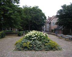 Tientallen jaren diende het Broerenkerkplein te Zwolle als parkeerplaats tot het in 2003 op de schop ging en volgens ontwerp van landschapsarchitect Peter van Saane opnieuw werd ingericht. Aan mij …