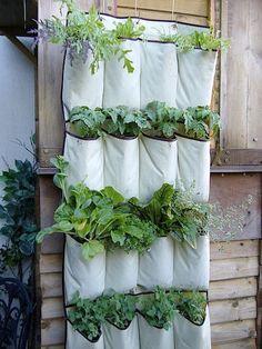 no space to garden?