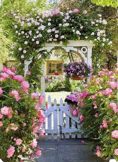 Rose arbor and a white picket gate