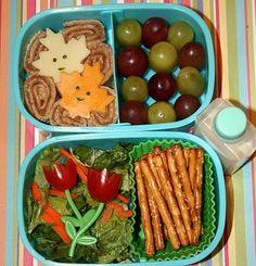 Roll ups and Salad bento