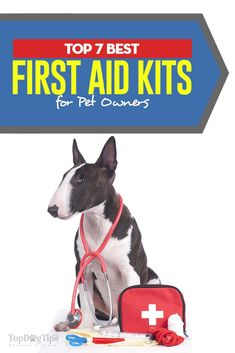23 Best Dog CPR and First Aid images in 2019 | First aid for dogs