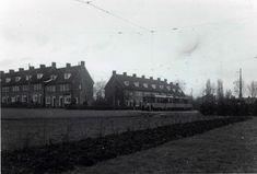 Groenezoom 1951. Foto: J.F. Schuld.