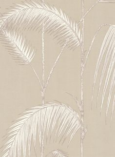 Palm Leafes from Cole and Son / Beige