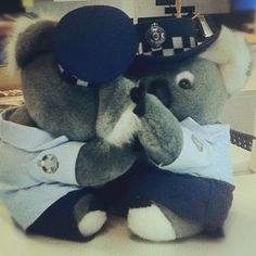 Day 28 | On the shelf |  There are a few police officers in my workplace and one of them gave these koala police to one of the admin workers. People keep putting them in compromising positions!!