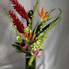 Modern flower arrangement with orchids, birds of paradise, and ginger from Floral Wonders.