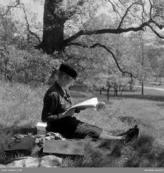 Äldre dam läser en tidning i gräset på Djurgården, Stockholm. Foto: K W Gullers, 1946