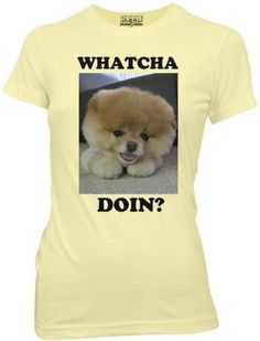 Boo the Dog Whatcha Doin? Adorable Puppy Juniors Yellow T-shirt from HauntedFlower.com