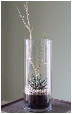Wintery terrarium