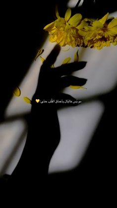 Iphone Wallpaper Quotes Love, Phone Wallpaper Images, Islamic Quotes Wallpaper, Wallpapers, Bad Quotes, One Word Quotes, Arabic Tattoo Quotes, Funny Arabic Quotes, Love Smile Quotes