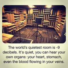 The World's Quietest Room is located in Orfield Labs in Minneapolis and it is an anechoic chamber. The idea was to create walls, floor and ceiling that absorb sound rather than have it bounce off as it does generally. Random Science Facts, Anechoic Chamber, Minneapolis, Labs, Ceiling, Floor, Education, World, Create
