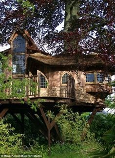 A very upscale tree house that looks like a full house. Nice cottage style tree house!