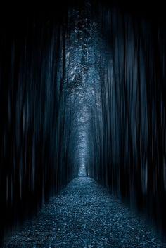 The Dark Way In ♥