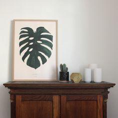 Monstera Plant print By Garmi