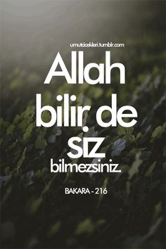 Sizi İnayet Yağmurlarında Islatacak Ayetlerden 19 Seçki God knows, you do not know — 19 selections from verses that will make you wet in the rain of grace Allah Islam, Islam Muslim, Quran Quotes, Islamic Quotes, Fitness Workouts, Leadership, Noble Quran, Islamic Gifts, Life Quotes Love