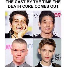 This made me die hahaha