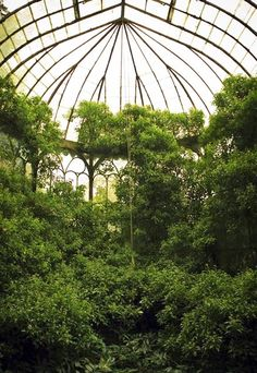 Beautiful greenhouse.  #Romantic #Gardening #Green