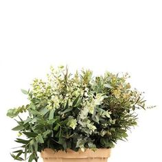 A fantastic mix of Eucalyptus varieties. Wholesaled in 10 bunch wraps. (Varieties will vary according to season).