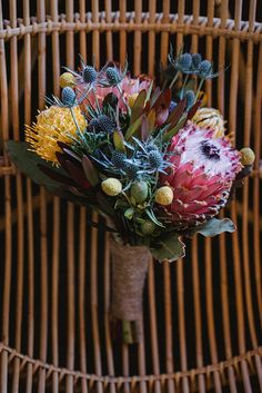 Pretty prickly succulents // Photography: CJ Photography