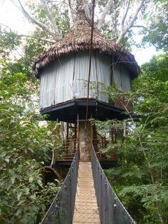 En el Amazonas