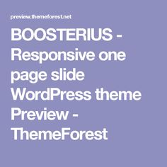 BOOSTERIUS - Responsive one page slide WordPress theme Preview - ThemeForest