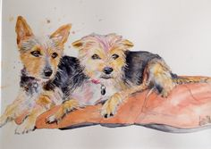Watercolour pet portraits. Please contact me for details.