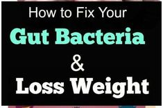 8 Ways To Improve Good Gut Bacteria For Weight Loss Beat Anxiety amp Allergies Do you know we need good gut bacteria for weight loss? If we eat healthy while targeting gut bacteria we can increase weight loss chances. Best Weight Loss Plan, Weight Loss For Women, Easy Weight Loss, Weight Loss Program, Losing Weight, Lose Weight Naturally, How To Lose Weight Fast, Lose Fat, Lose Belly Fat