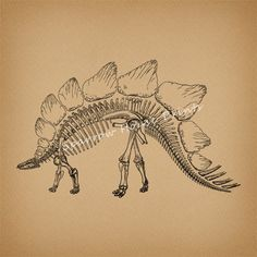 Stegosaurus Art Print Artwork Dinosaur by SparrowHousePrints, $12.00