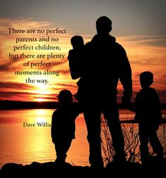 There are no perfect parents ...