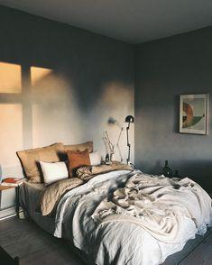 Cosy Home Interior - - Interior Living Room Natural - - Interior Plants Monstera