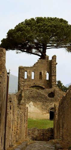 Pompeii, Italy ----- I've had the extreme pleasure of visiting and experiencing this amazing place! LOVE!!