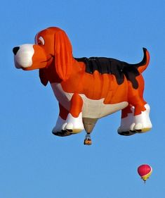 beagle hot air balloon