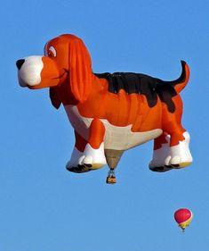 beagle hot air balloon