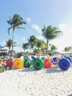 Travel Guide: Eastern Caribbean Cruise Eastern Caribbean Cruises, Back To Reality, Tropical Vibes, Travel Guide, How Are You Feeling, Tour Guide