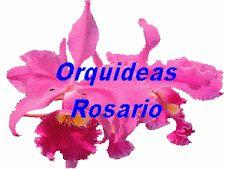 Los abonos son muy importantes en el cultivo de orquídeas en el interior de la casa o en invernaderos, ya que en estos lugares nuestras plan...