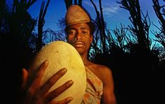 A fossil of an 'Elephant bird' egg which roamed Madagascar only 1000 years ago. [I wish I could have seen that egg roaming Madagascar. Friends with Humpty Dumpty?]