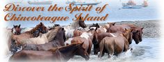 When Ilee's old enough to love the book, Misty of Chincoteague....we'll travel here the last Wednesday of July